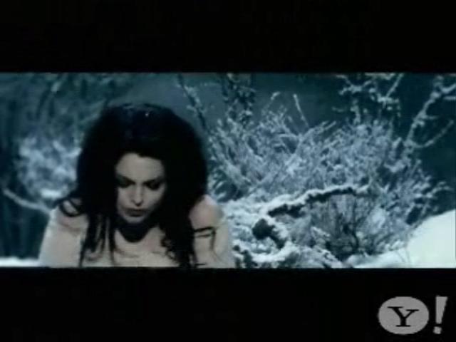 Lithium Evanescence Image 4116043 Fanpop