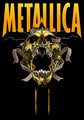 Metallica Wallpaper - metallica photo