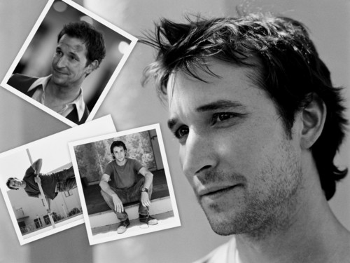 Noah Wyle Hintergrund probably with a portrait called Noah