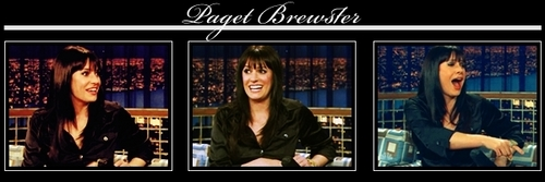 Paget Banner - paget-brewster Fan Art