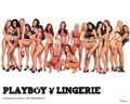 playboy - Playboy Lingerie wallpaper