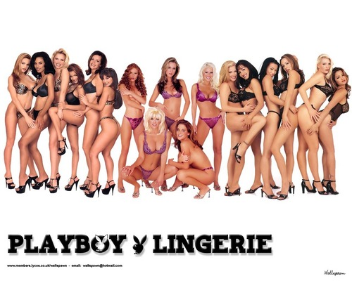 Playboy wallpaper with a bikini titled Playboy Lingerie