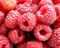 Raspberry - food wallpaper
