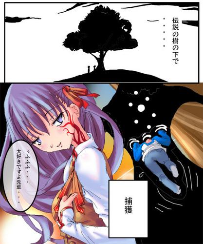 Sakura fecha