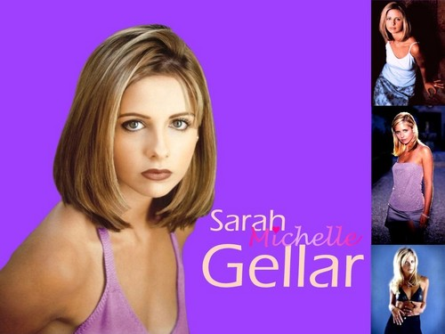 Sarah Michelle Gellar wallpaper with a portrait and attractiveness entitled Sarah