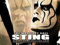 Sting - professional-wrestling wallpaper