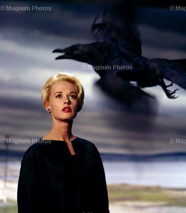 The Birds starring Tippi Hedren