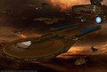 The Fleet - star-trek photo