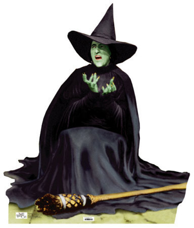 オズの魔法使 壁紙 probably containing a fedora entitled The wicked witch of the west