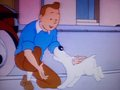 Tintin and Snowy - tintin photo