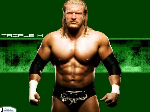 Professional Wrestling 壁纸 possibly with a six pack and a 猛男, hunk, 大块 titled Triple H