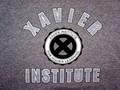 Xavier Institute