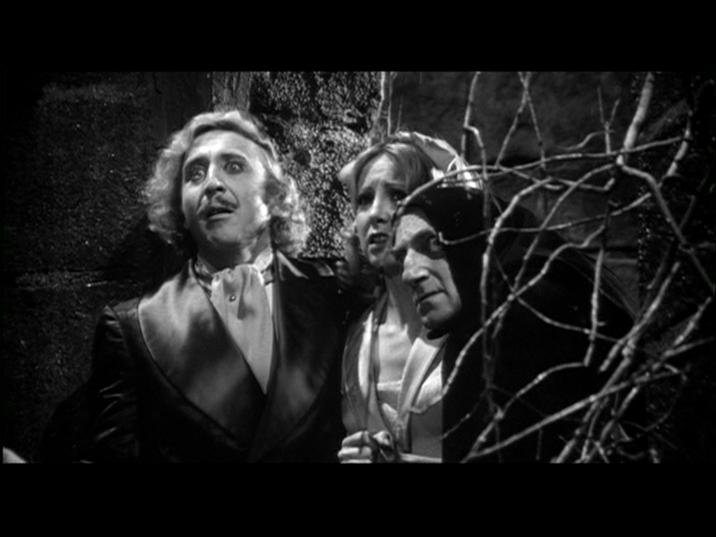 satire of young frankenstein I must admit it is hard to watch these three films without recalling mel brooks' expert satire in young frankenstein - the scene with the hermit in the woods remains a spot on parody by the time we get to ghost of frankenstein, karloff had left and the series was starting to run out of ideas.