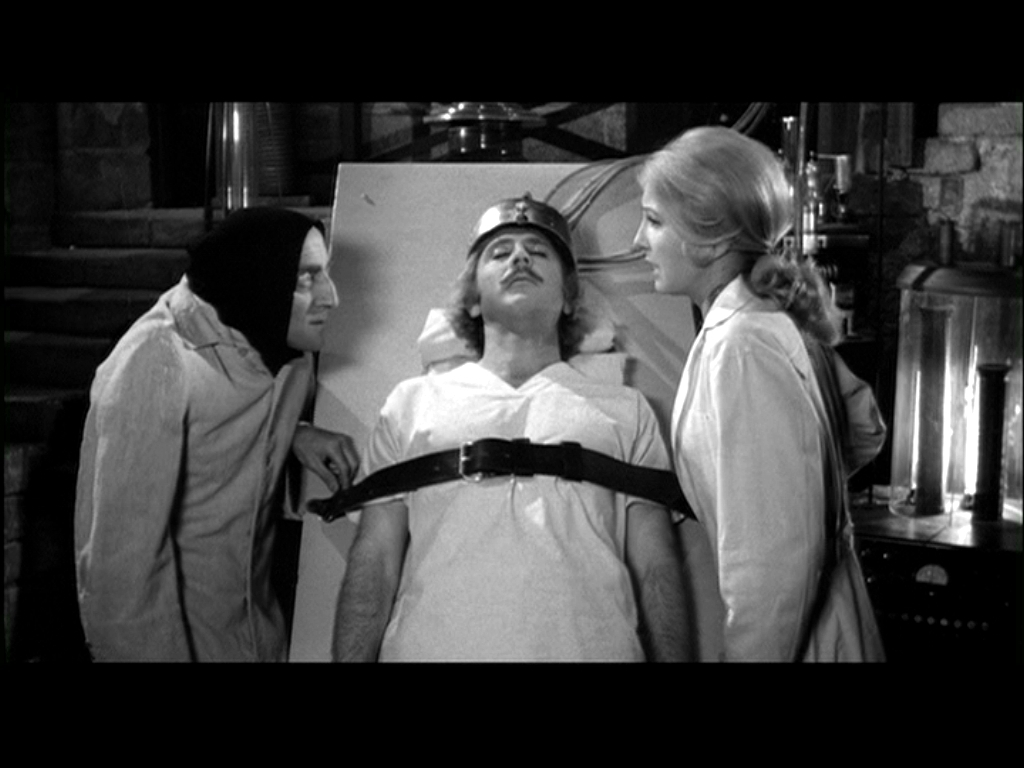 Laboratory young frankenstein movie sills