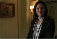 Jorja Fox wallpaper probably containing a business suit called sara sidle