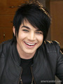 Adam Lambert - top 36 - american-idol photo