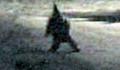 Argentina Gnome - gnomes photo