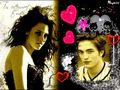 Bella & Edward - fanpressions wallpaper