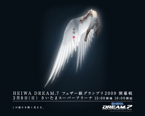 MMA wallpaper probably containing a fountain called Dream. 7