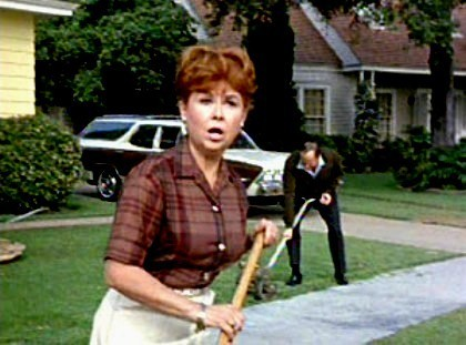 Bewitched wallpaper possibly with a croquet, a wicket, and a street entitled Gladys Kravitz