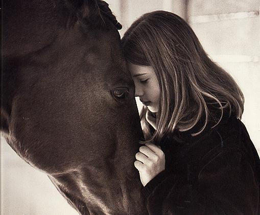 the horse whisperer After her fourteen year old daughter suffers a serious horse riding accident, a high-powered magazine editor goes to montana to bring the horse to a legendary 'horse.