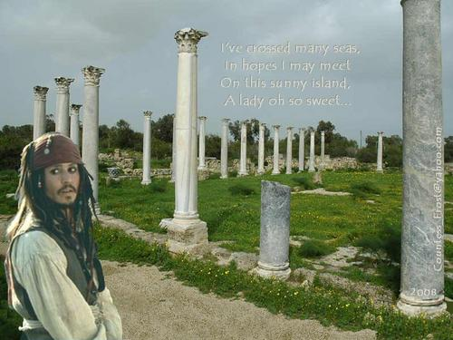I've Crossed Many Seas - captain-jack-sparrow Wallpaper