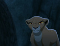 Kiara - the-lion-king-2-simbas-pride photo