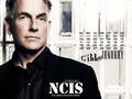 ncis - NCIS - Calendar 2009 wallpaper
