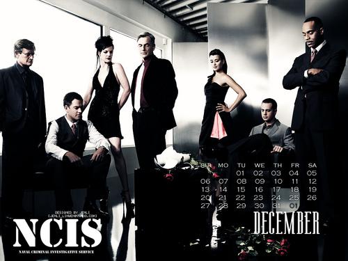 NCIS - Unità anticrimine - Calendar 2009