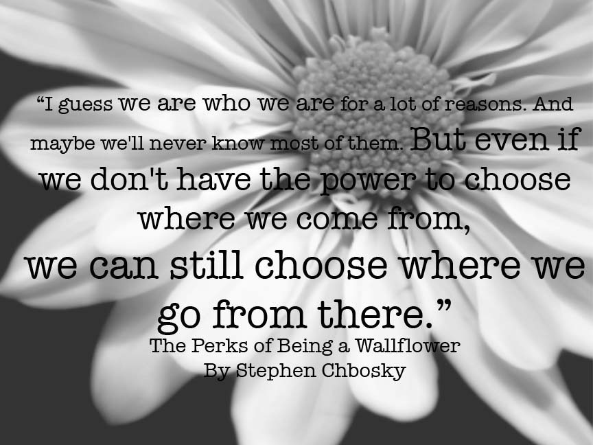 The Perks of Being a Wallflower Perks QuotePerks Of Being A Wallflower Quotes We Accept The Love