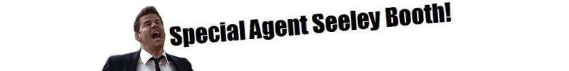 Special Agent Seeley Booth banner