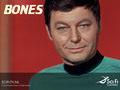 TOS - star-trek-the-original-series wallpaper