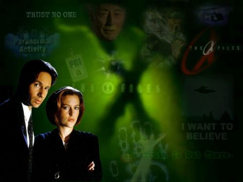 The X-Files achtergrond containing a business suit and a concert entitled the xfiles