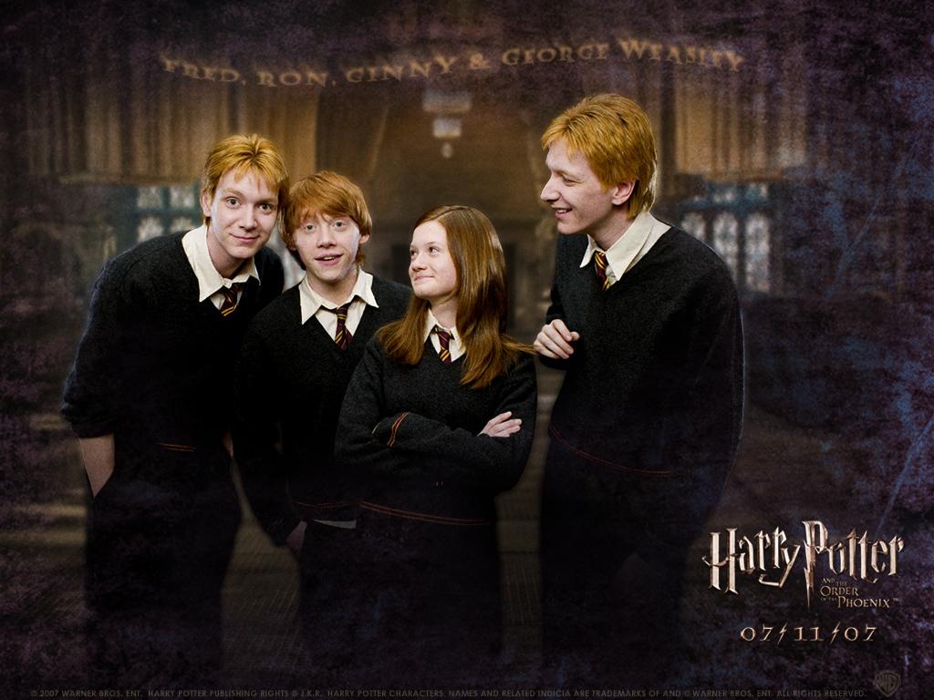 Fred Weasley And Hermione Granger Fan Art weasley family - Olive...