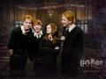 weasley family