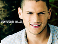 wentworth miller - prison-break wallpaper