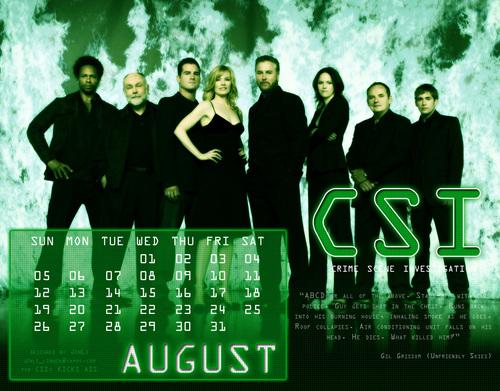CSI Calendar 2007