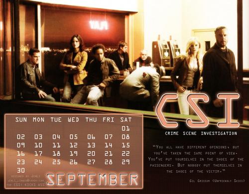 Đội điều tra hiện trường Calendar 2007