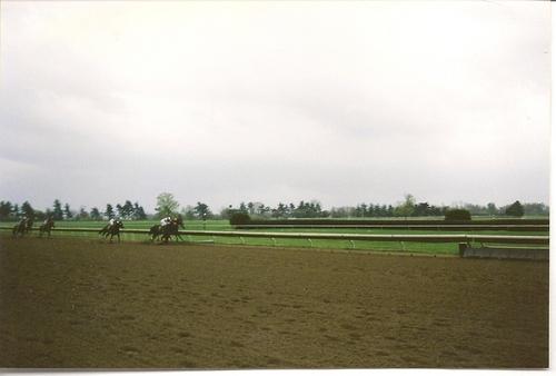 Keeneland Race Track: The race is on!