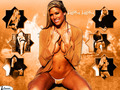Kelly Kelly. - kelly-kelly wallpaper