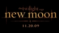 Official Title Art - twilight-series photo