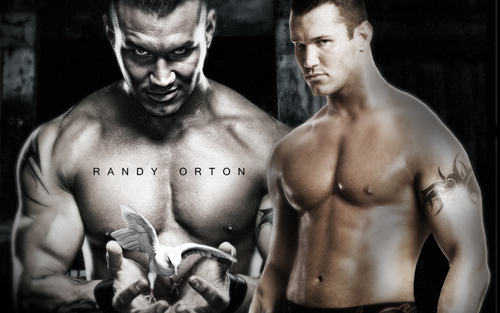Professional Wrestling wallpaper containing a six pack and a hunk titled Randy Orton