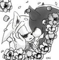 black and white Sonadow