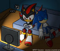 falls asleep again - sonadow photo