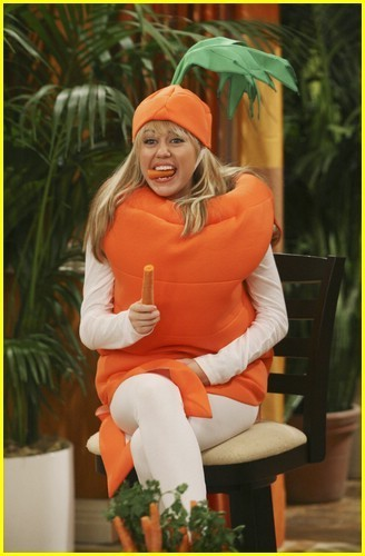 hannah montana welcome bungle - hannah-montana photo