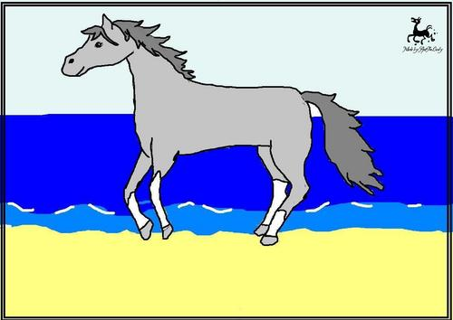 horseonbeach