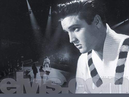 Elvis Presley wallpaper entitled Elvis Presley