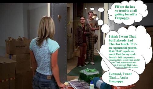Fanpoppy Fever: Leonard and Sheldon