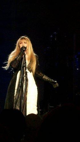 Stevie in show, concerto