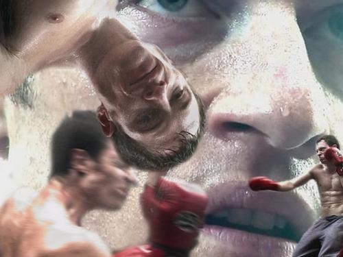 boxing paul